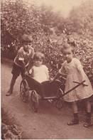 Anna Susanna, Hermann und Tävi